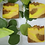 Thumbnail: Fresh Agate Soap