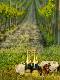 champagne-10423