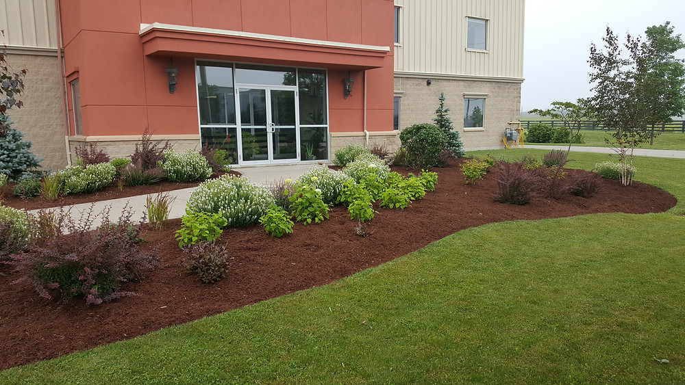 Guelph commercial lawn cutting service