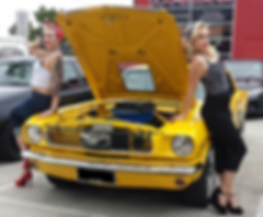 Autohaus Melbourne Assessing | Melbourne Autohaus Motor Accident Recovery | Experienced in vehicle assessing with 30 yr exp in the motor industry. Wayne Hayes 0439311830