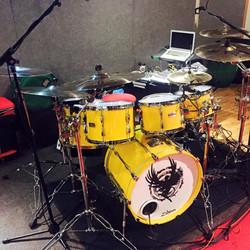Jamie Little custom drum skin.jpg
