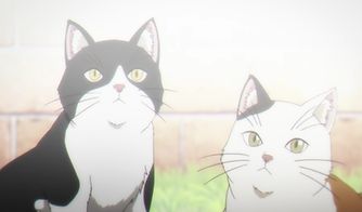 Otherside Picnic Ep 8: Cats - from Cute to Killer.