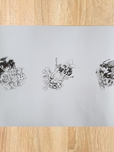 Bee Tryptic