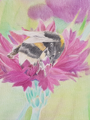 Busy Busy Bumblebee