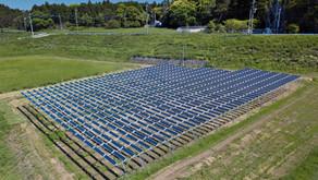 【ニュース】パタゴニア、渋谷ストアの電力をソーラーシェアリングに切り替え