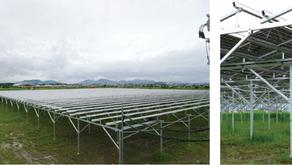 【ニュース】滋賀県に新たなソーラーシェアリングー秋からニンニク栽培