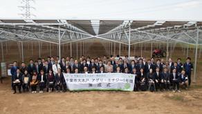 高圧ソーラーシェアリングサイト「千葉市大木戸アグリ・エナジー1号機」落成式を実施