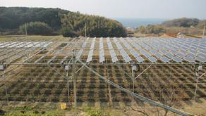 【導入事例】淡路島ソーラーファーム