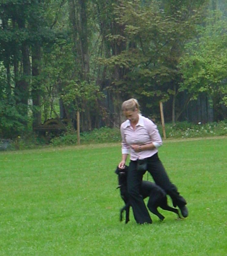dogdance Kerstin Lisa