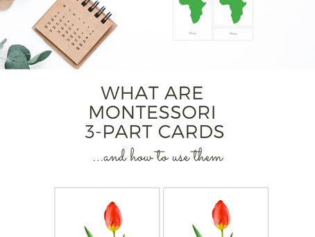 Montessori 3 Part Cards