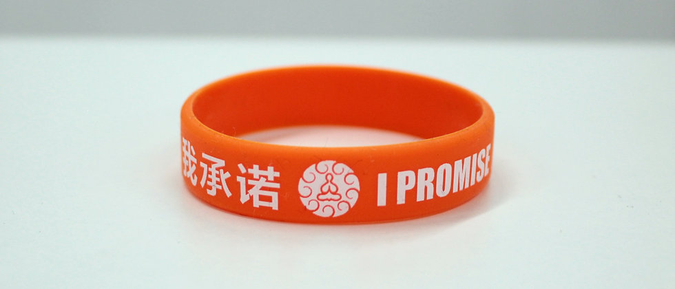 PROMISE BAND