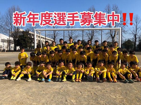 S__32415750.jpg
