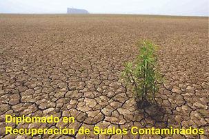 Diplomatura_en_Recuperación_de_Suelos_C