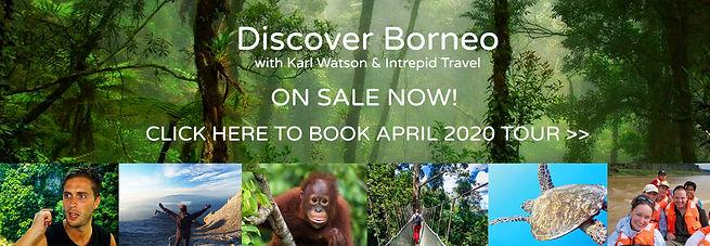 Discover Borneo On Sale Now.jpg