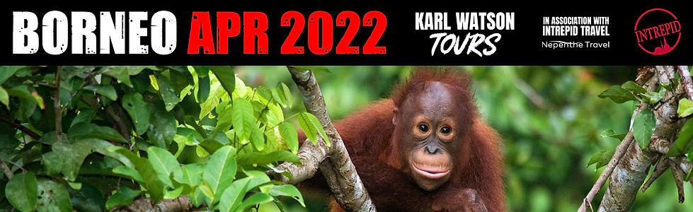 Borneo Title 3.jpg