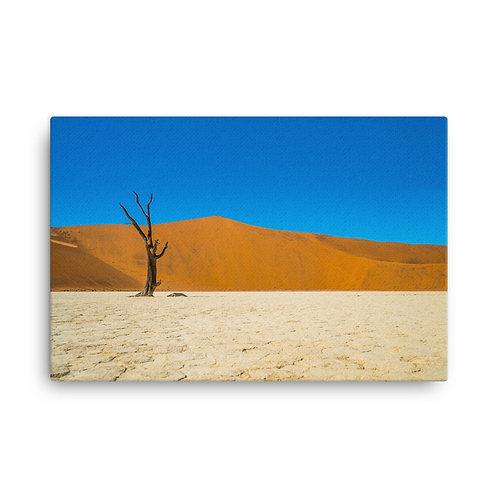 Namibia Desert [Canvas Print]