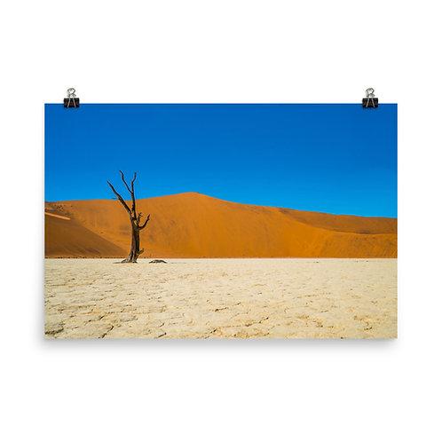 Namibia Desert [Poster]