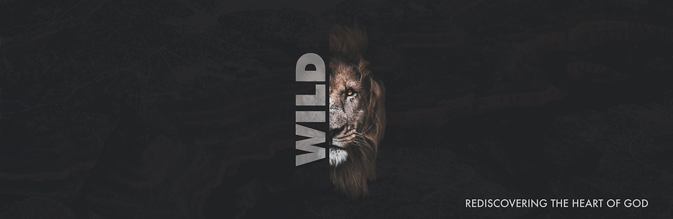 wild-banner-07.png