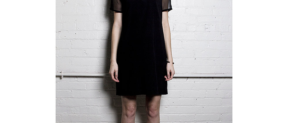 The Sheer Panel Dress