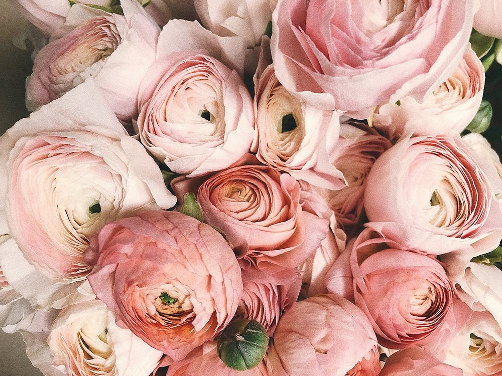 bundle of pink flowers