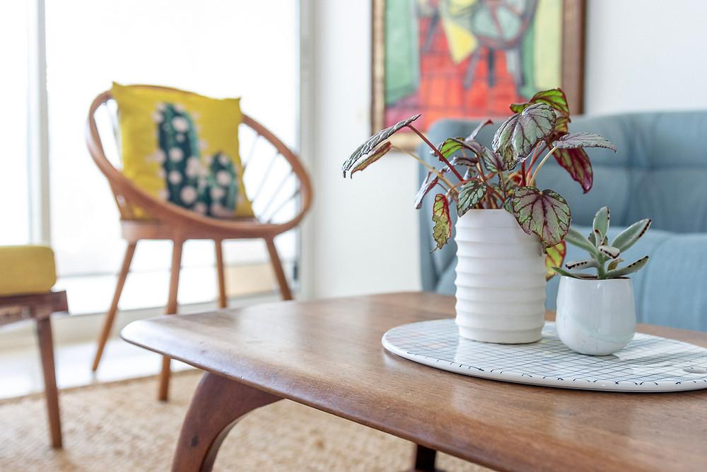 עיצוב סלון סטודיו חיית וינטאג'- צמחייה וכריות נוי משלימים את הסלון