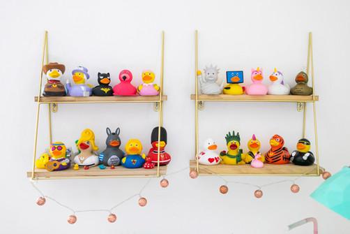 מדפים עם אוסף הברווזים המפואר. בין ילדות לבגרות
