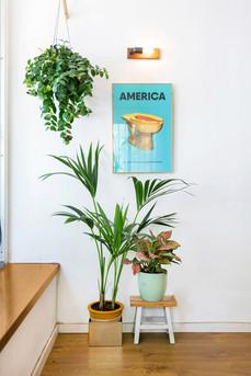 פינת הצמח והתמונה - מכניסה את החוץ פנימה