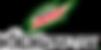 mtn-dew-logo-.png