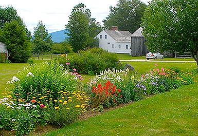 summergardenbuilding.jpg