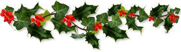 christmas holly-border.jpg