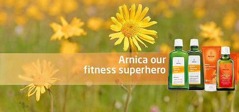 arnica-banner1.jpg