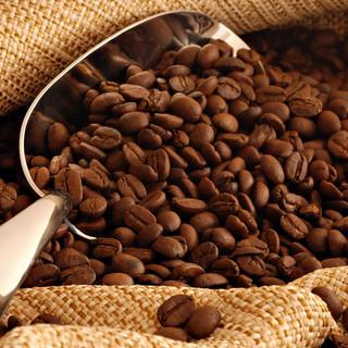 coffee-beans-lago-bay.jpg