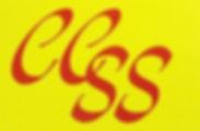 CCSS.jpg