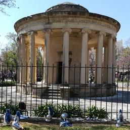Maitland Rotunda