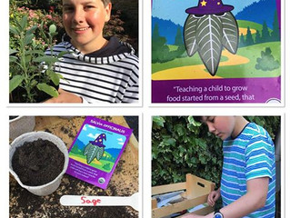 Gardening expert 'Green Fingered George' wrote a blog for Mr Plant Geek using our herb seeds!