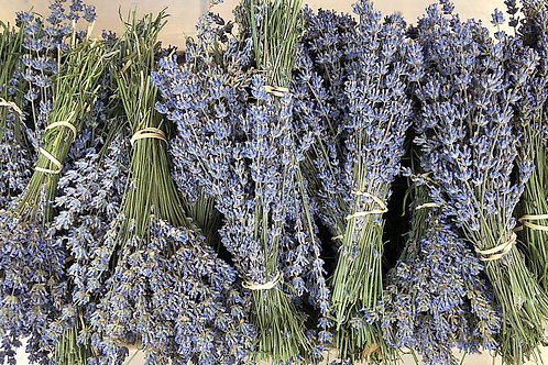 3 DRIED LAVENDER BOUQUETS - Free Shipping