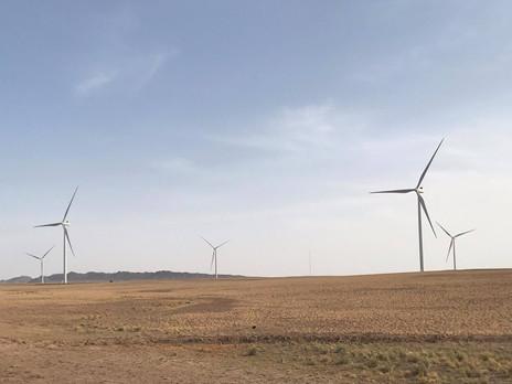 How to kick-start Mongolia's net-zero carbon economy