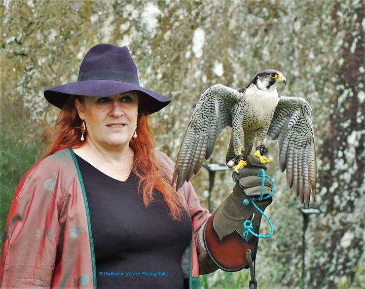 Ma rencontre avec les faucons au Château de Bouillon