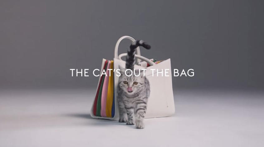 CAT'S OUT THE BAG