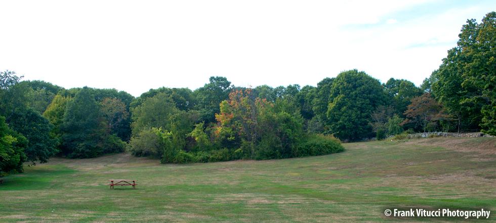 NIA_Property_Lawn1