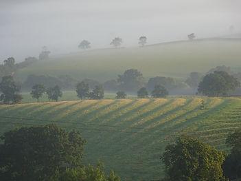 An autumn day at Edge Hill Warwickshire