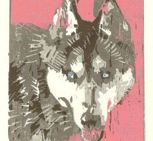 Lonnie (Son of Wolfie), 2013