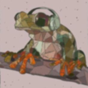 hifi frog studios.jpg