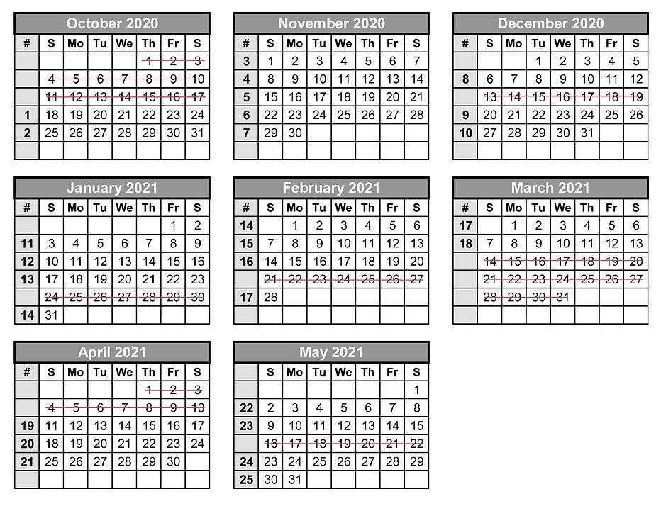 Shiras Sarah Calendar 2020 2021.jpg
