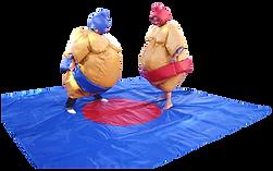 jeu sumo.png