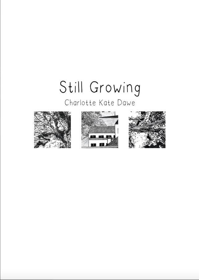 Stil Growing 1.png