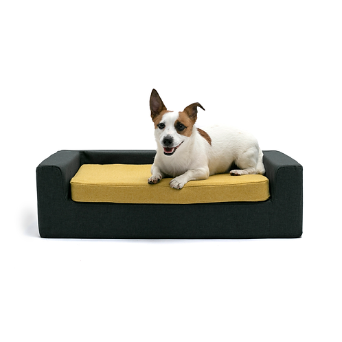 SPECIAL EDITION Mustard & Graphite base Orthopedic dog bed-sofa