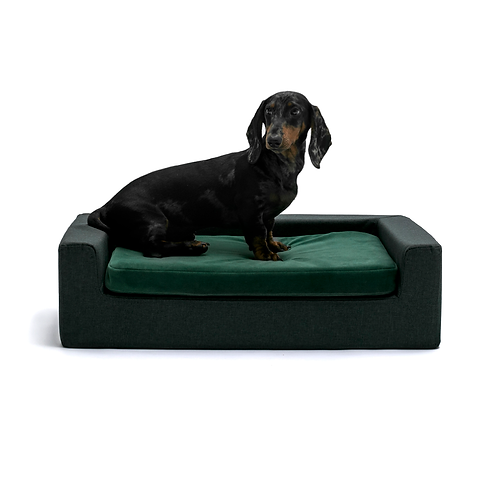 SPECIAL EDITION Velour Green & Graphite base Orthopedic dog bed-sofa