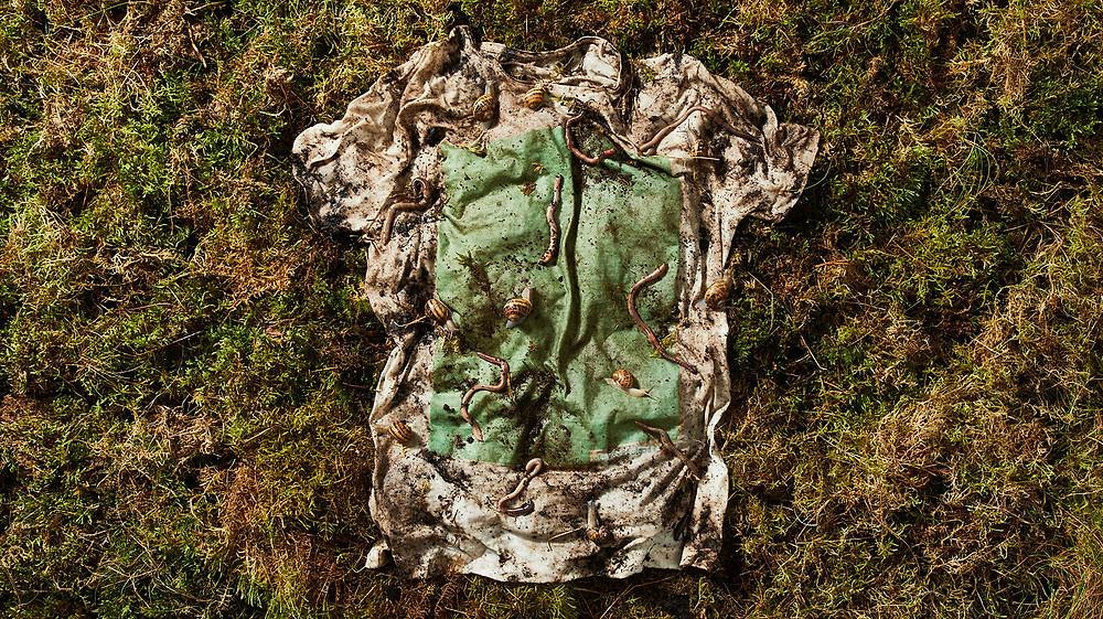 Sustainable Fashion Sportswear biodegradable