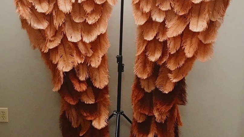 Adult size ombre Couture Angel Wings